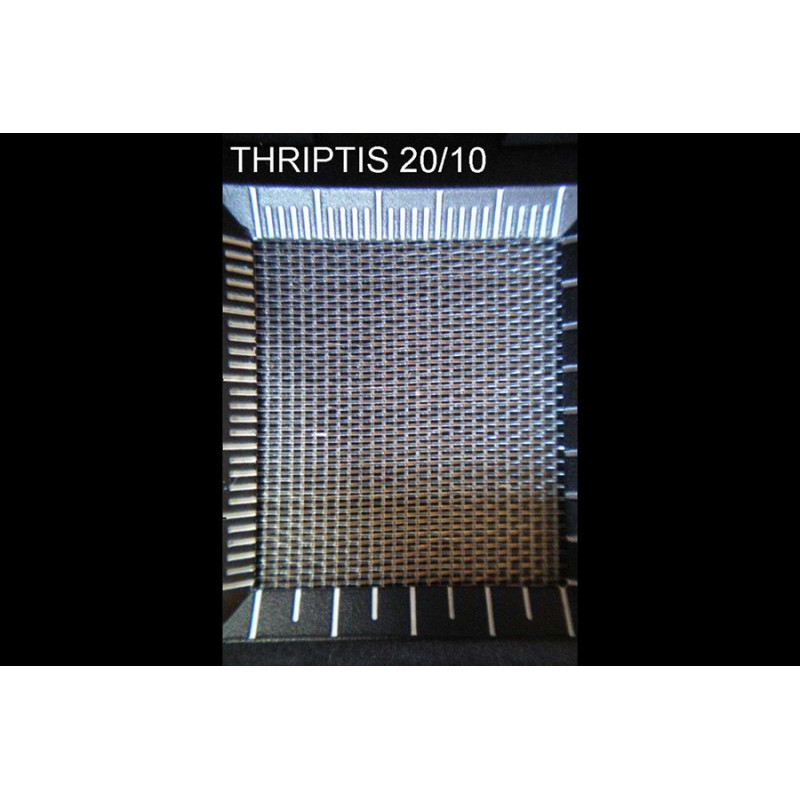 Filet anti-insectes Thriptis 20/10