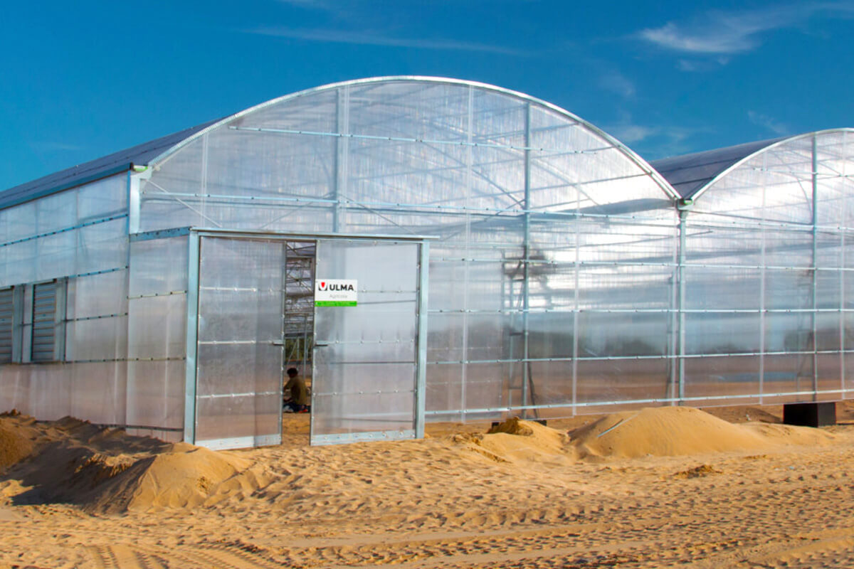 Multispan circular greenhouse in the Middle-East
