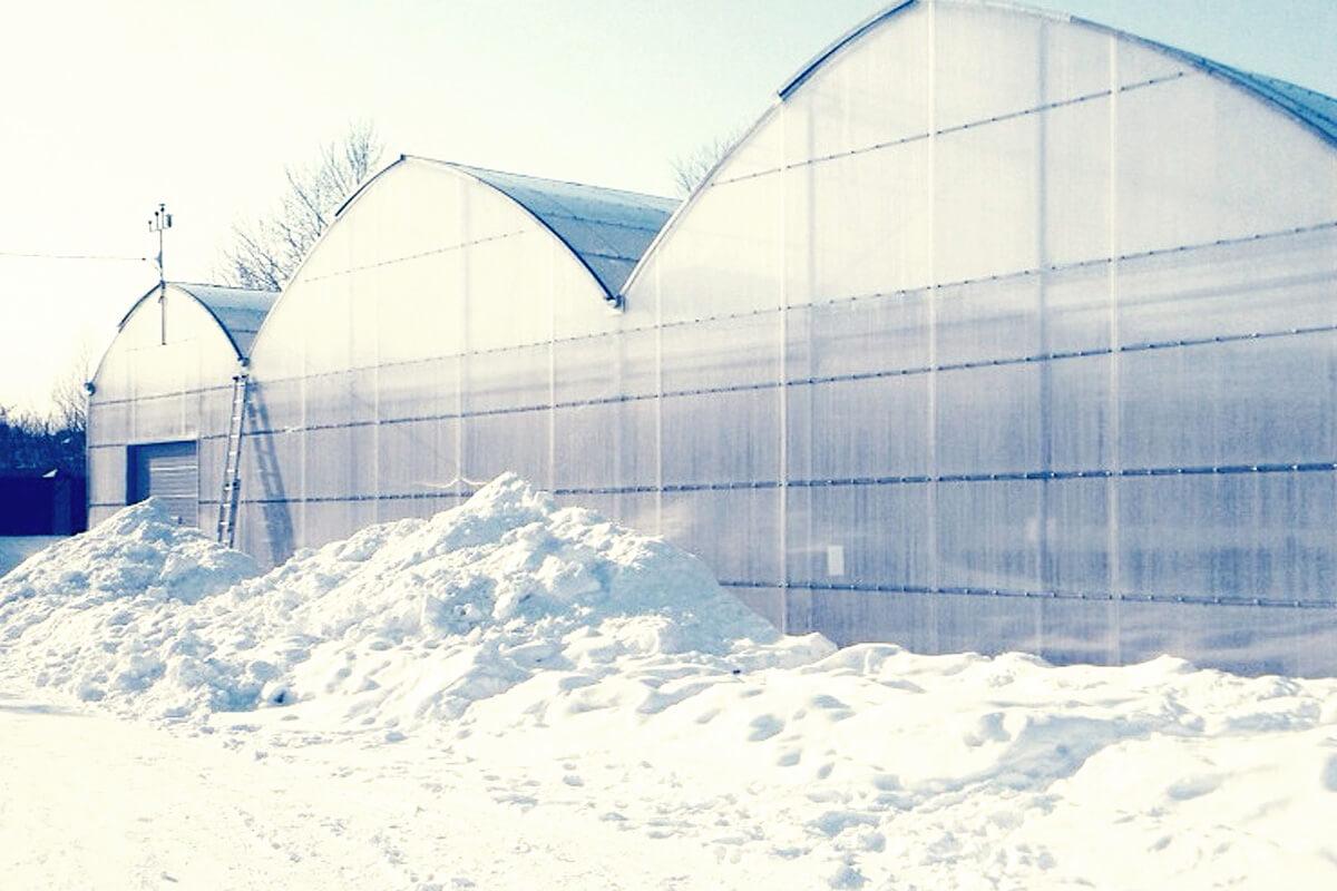 Professional greenhouse for sub-zero temperatures