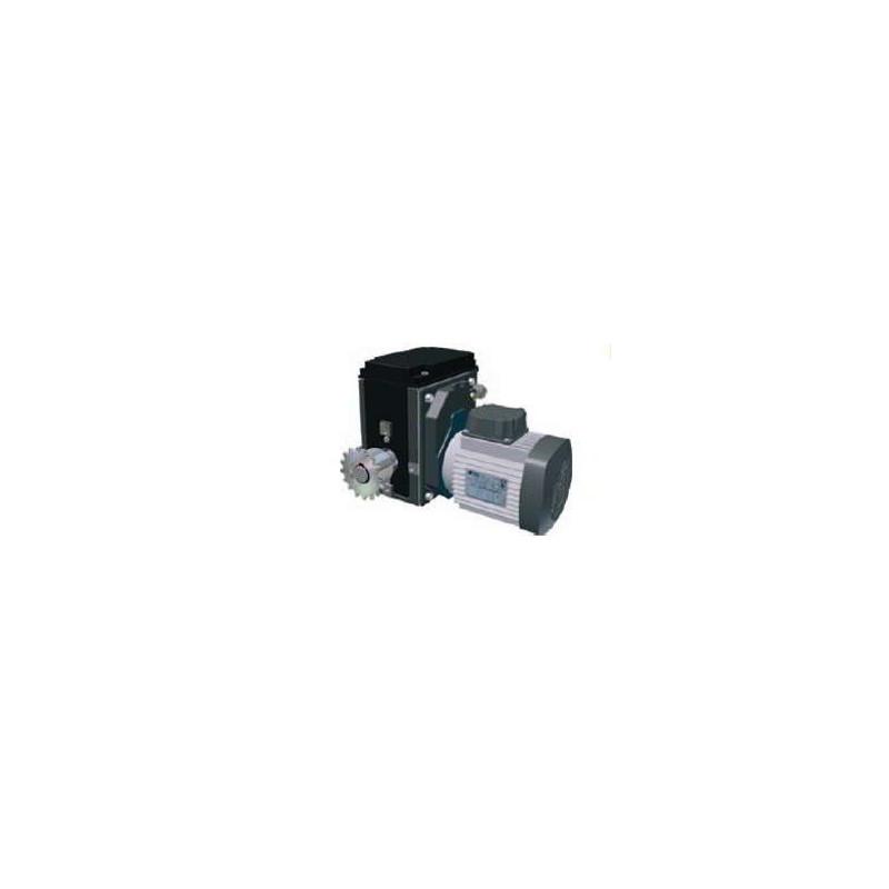 RW400 Motor gearbox