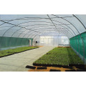 "9.60 m wide ""Le Breton"" pro tunnel greenhouse"