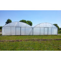 7.80 m wide bi-tunnel greenhouse