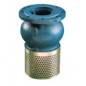 302P strainer valve with flange