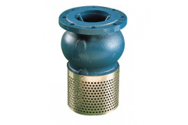 302P strainer valve with flange