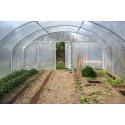 6 m wide Prokit garden grenhouse