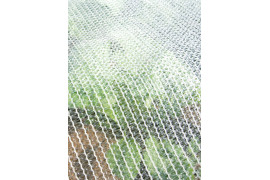 Destockage Filet anti-mouche pour légumes 38 g/m²
