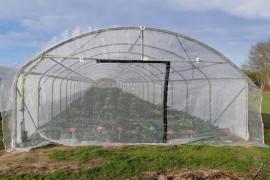 Destockage pignon anti-insectes - 7.80 m x 5 m