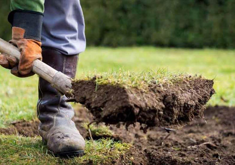 préparer jardin paillage