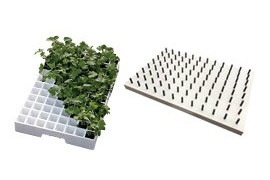 Plaques de semis rigides