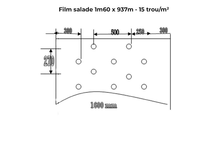 film salade 15 trou